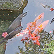 Sun Water Flowers And Fish Poster