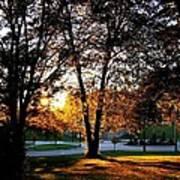 Sundown In Stanley Park Poster
