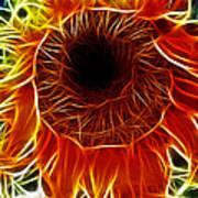 Sunflower Fractal Poster