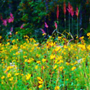Sunflowers And Grasses Poster