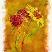 Sunflowers In Fall Poster