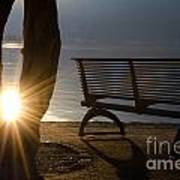 Sunlight And Bench Poster