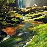 Sunrise At Elakala Falls Poster