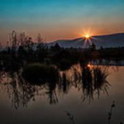 Sunrise Over The Beaver Pond Poster