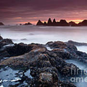 Sunset At Seal Rock Poster by Keith Kapple