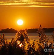 Sunset On White Lake Poster