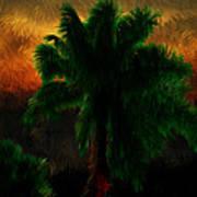 Sunset Palm Poster