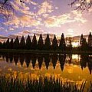 Sunset Reflection In A Park Pond Poster by Craig Tuttle