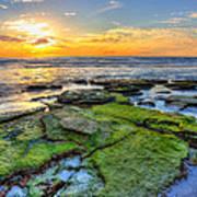 Sunset Siesta Key Rocks Poster by Jenny Ellen Photography