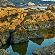 Sunset Tidepool Larry Darnell Point Lobos Central California Landscape Poster