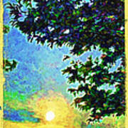 Sunset With Leaves Poster