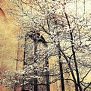 Surreal Gothic Church Window With Fall Tree Poster by Kathy Fornal