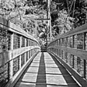 Suspension Bridge Poster