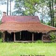 Swamp House Or Cracker Cabin Poster