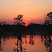 Swamp Sunset Poster