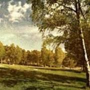 Swedish Landscape Poster