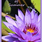 Sweetness Of Summer Poster