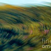 Swirling Field Poster