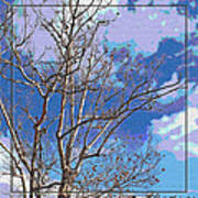 Sycamore Tree Branch Art Poster