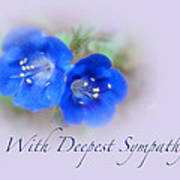 Sympathy Card - Blue Wildflower Poster