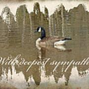 Sympathy Greeting Card - Canada Goose Poster