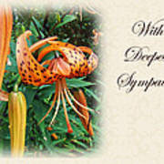 Sympathy Greeting Card - Wildflower Turk's Cap Lily Poster