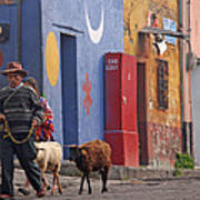 Taking Sheep To Market At Chichicastenango Poster