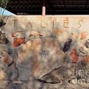 Taliesin Entry - Arizona Poster