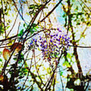 Tangled Wisteria Poster by Andee Design