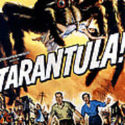Tarantula, John Agar, Mara Corday, 1955 Poster by Everett