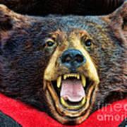 Taxidermy -  Black Bear Poster