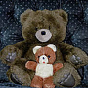 Teddy Elder Care Bear Poster