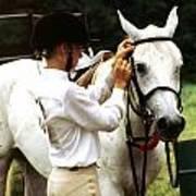 Teen Equestiran Poster