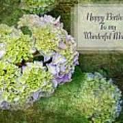 Textured Hydrangeas Birthday Mother Greeting Card Poster