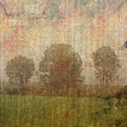 Textured Trees Poster