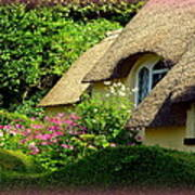 Thatched Cottage With Pink Flowers Poster