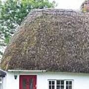 Thatched Roof Cottage With Red Door Poster