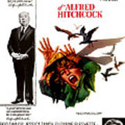 The Birds, Aka Alfred Hitchcocks The Poster by Everett