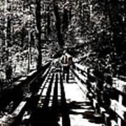 The Bridge Shadow Poster