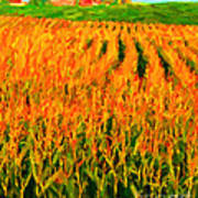 The Cornfield Poster by Wingsdomain Art and Photography