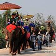 The Elephant Parade Poster