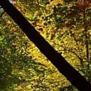 The Fall Split Poster