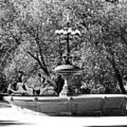 The Fountain And The Ride In Black And White Poster