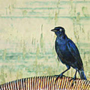 The Grackle Poster