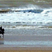 The Horse And The Sea Poster