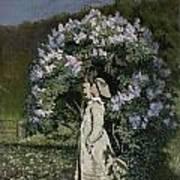 The Lilac Bush Poster