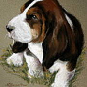 The Little Basset Poster by Mary Sparrow