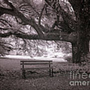 The Lonely Bench Poster