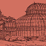 The Palm House In A Salmon Pink  Poster