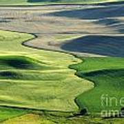 The Palouse 2 Poster